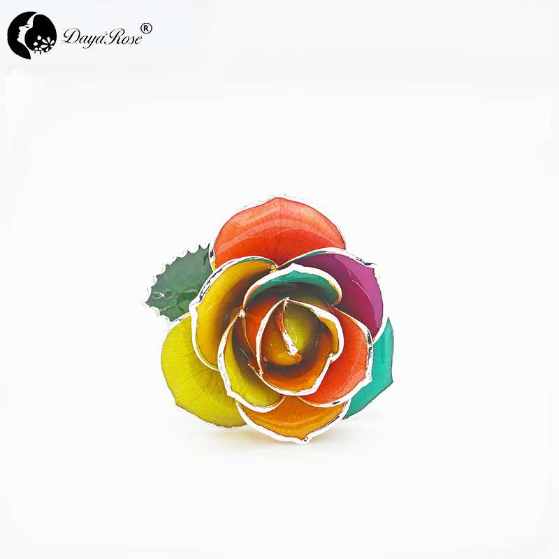 Colorful Silver Roses (August)